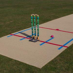 T20 Skills Pitch