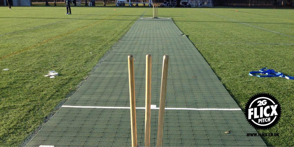 Harvard Cricket Club Pitch