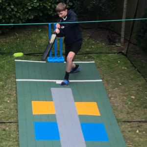 Backyard Cricket Pitch