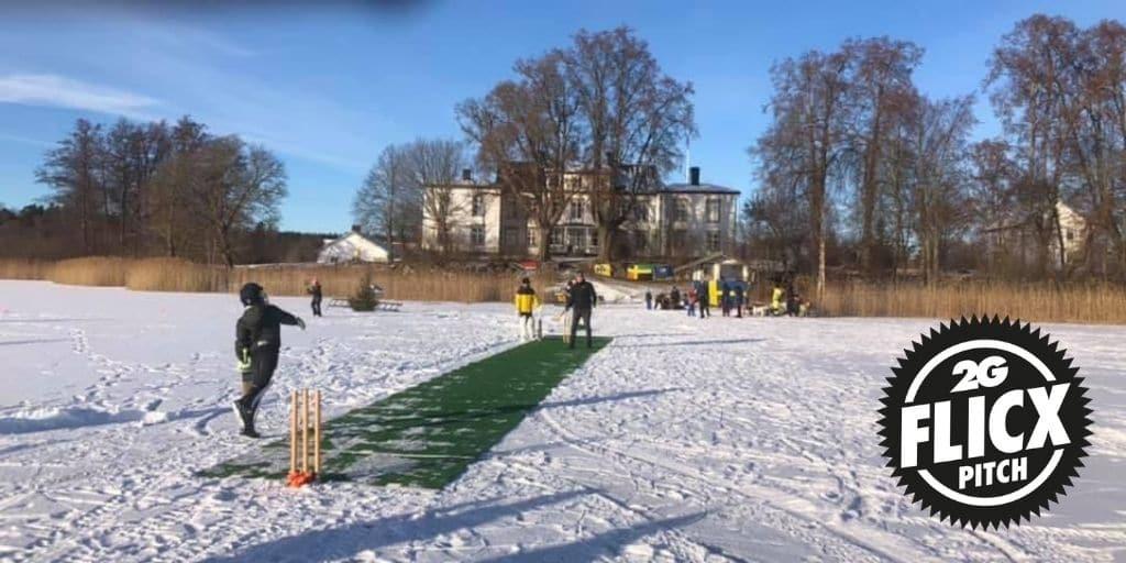 Ice Cricket | Guttsta Wicked CC