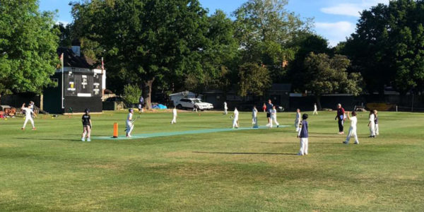 Junior Cricket on a Flicx Pitch - Beckenham